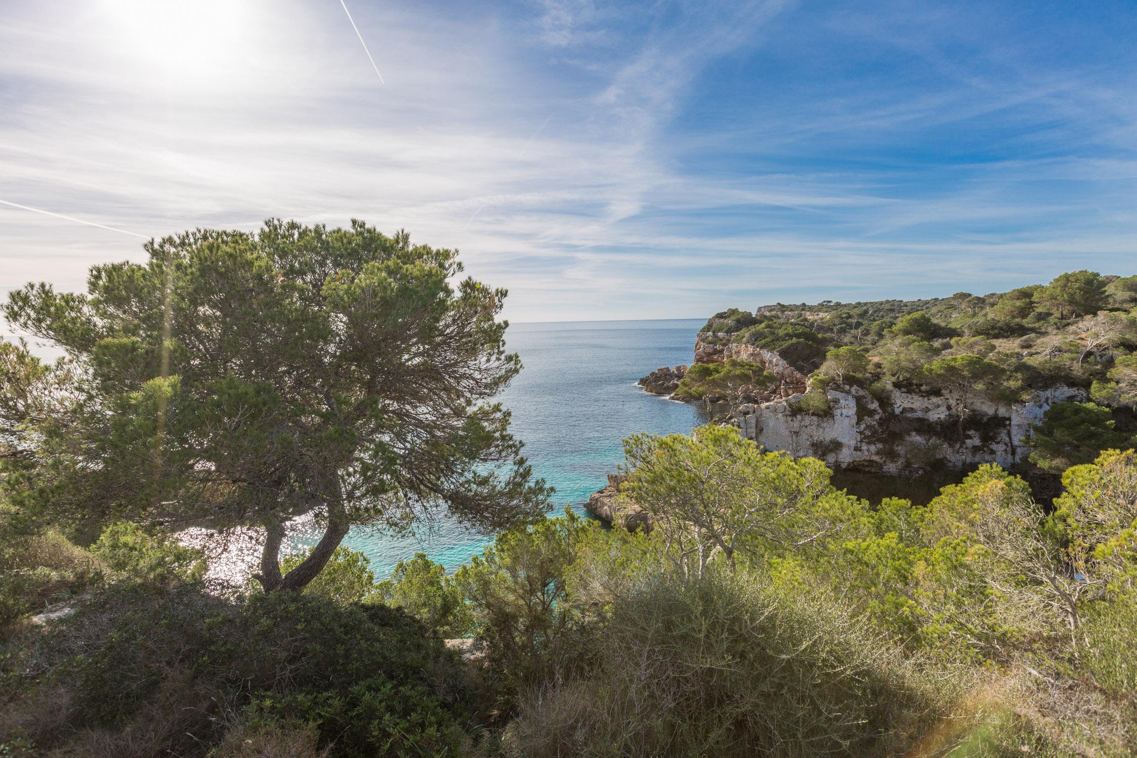 Ferienhaus Chalet- LLESCA (1935845), Santanyi, Mallorca, Balearische Inseln, Spanien, Bild 19