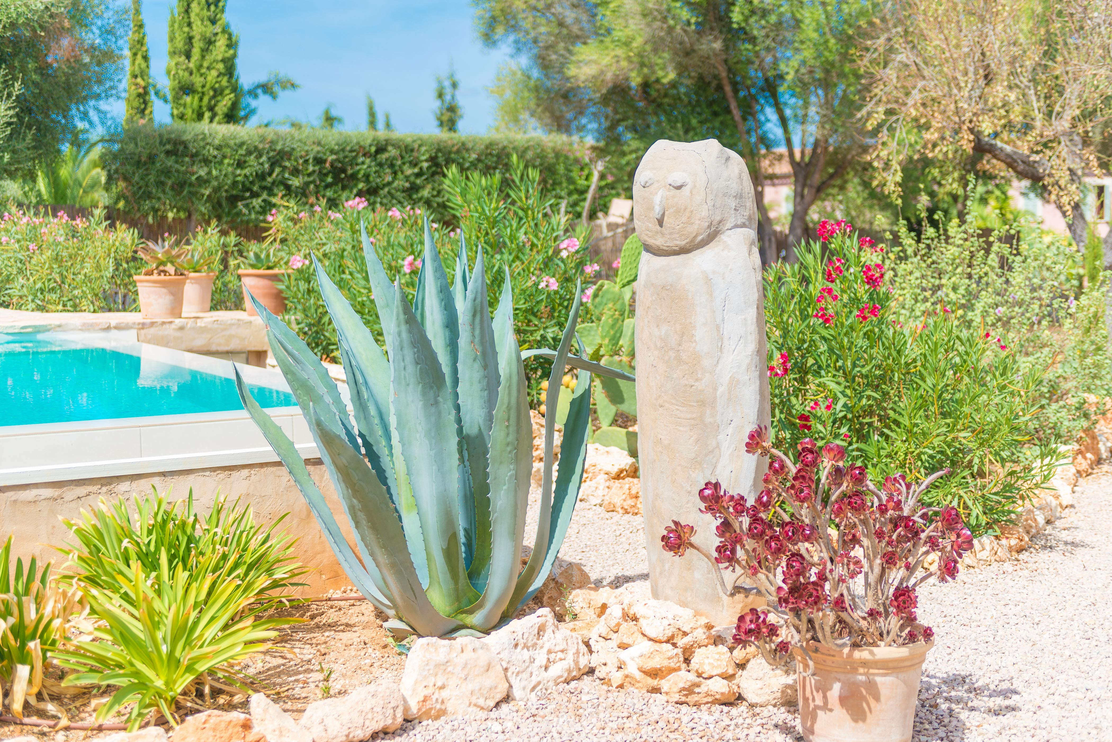 Holiday house ECO CASCADA - ADULTS ONLY (2233289), Costitx, Majorca, Balearic Islands, Spain, picture 13