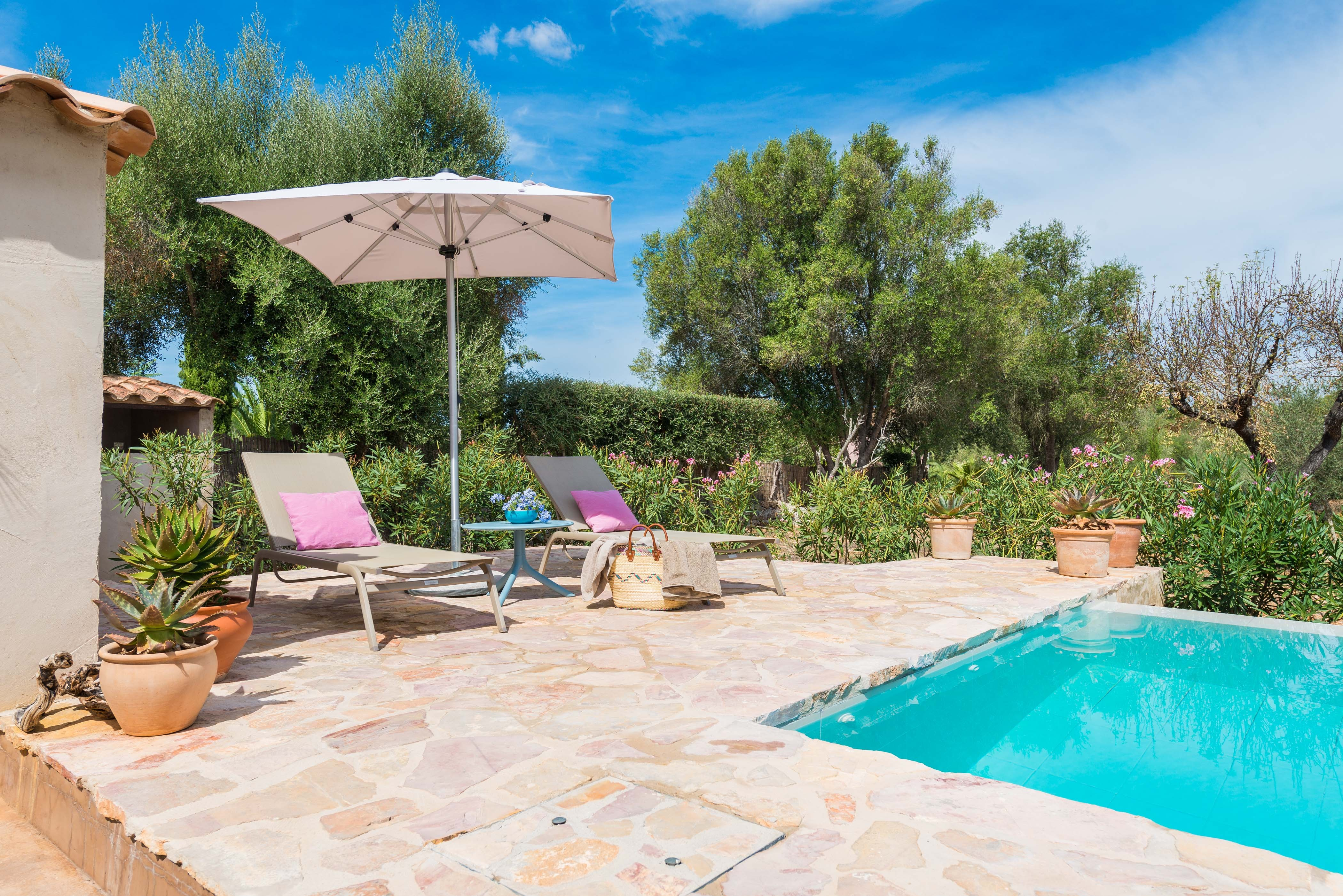 Holiday house ECO CASCADA - ADULTS ONLY (2233289), Costitx, Majorca, Balearic Islands, Spain, picture 4