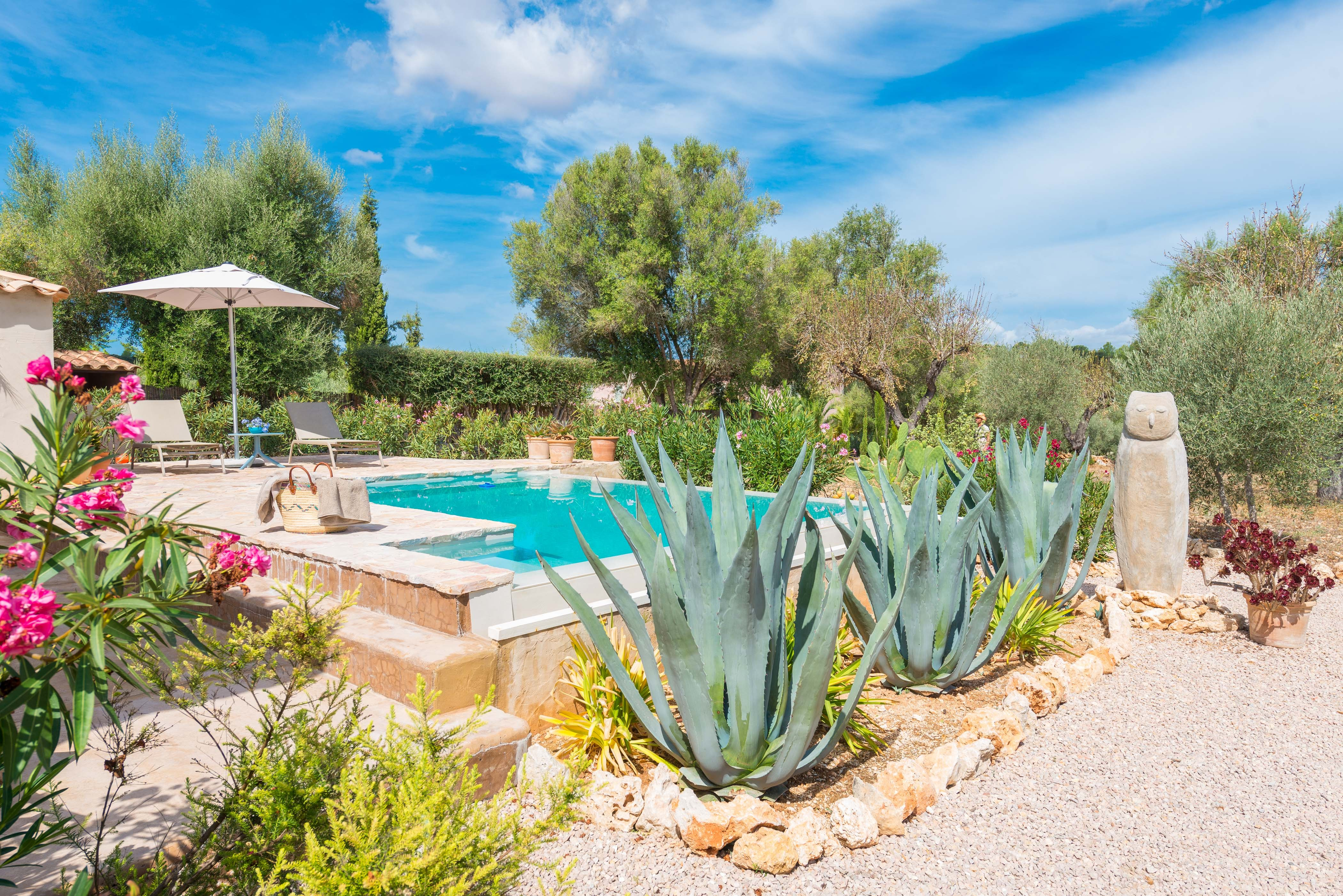 Holiday house ECO CASCADA - ADULTS ONLY (2233289), Costitx, Majorca, Balearic Islands, Spain, picture 1