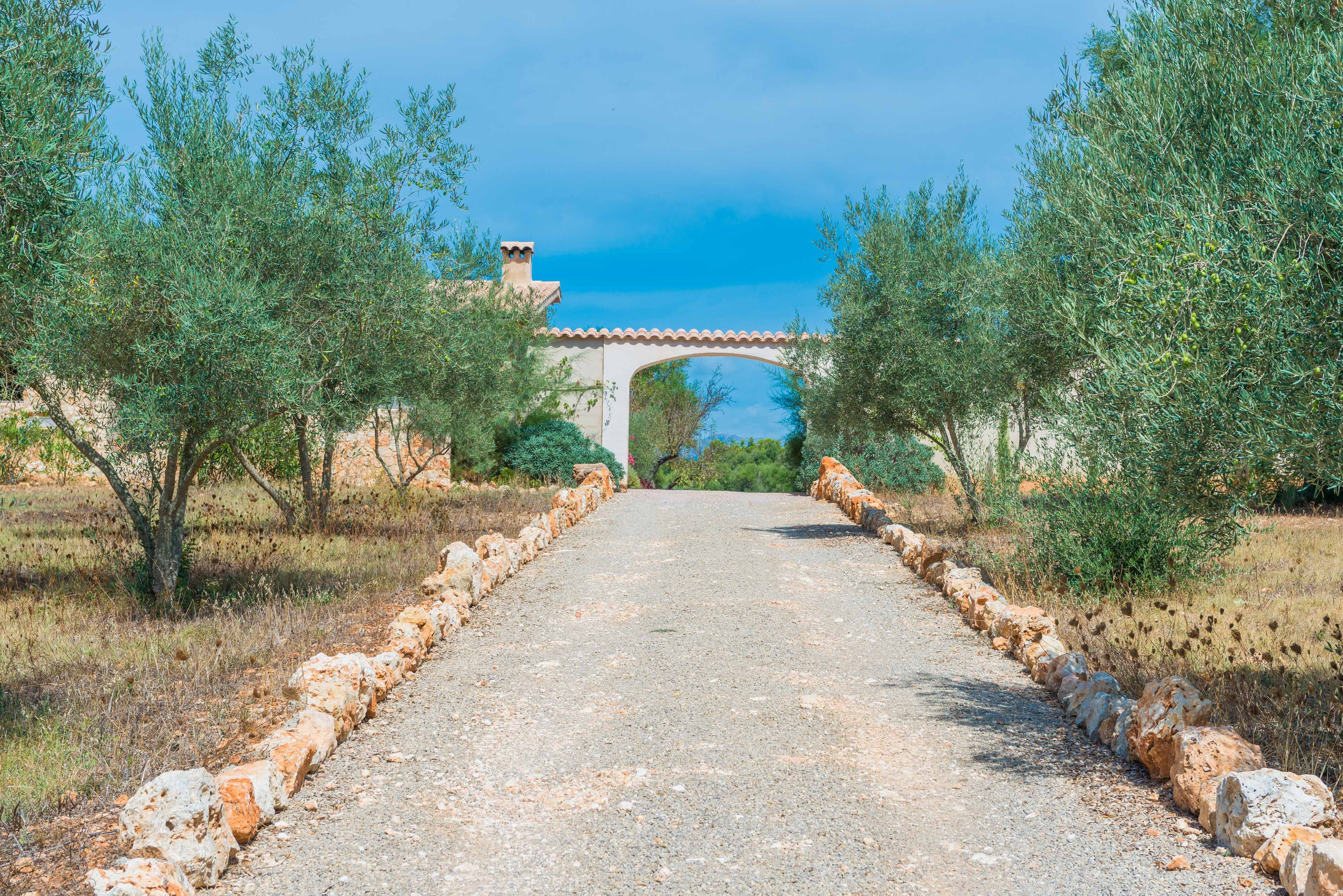 Holiday house ECO CASCADA - ADULTS ONLY (2233289), Costitx, Majorca, Balearic Islands, Spain, picture 35